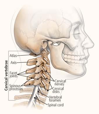 De gevolgen van body stress in de nek
